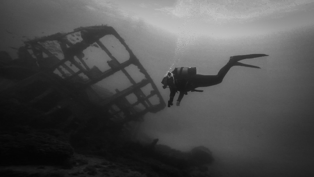 Guided Diving photo